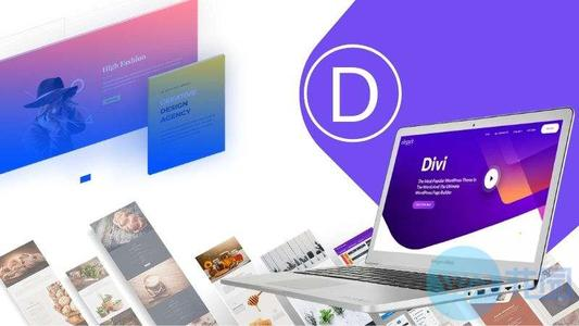Divi Theme v4.4.4 WordPress多风格主题Divi破解版